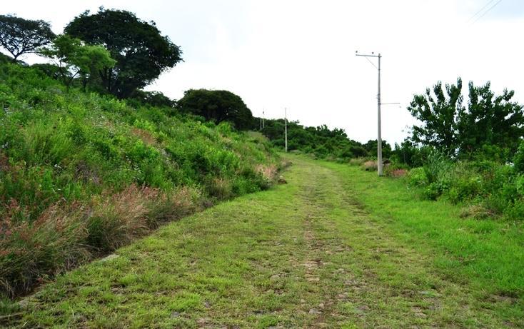 Foto de terreno habitacional en venta en  , pedregal de san miguel, tlajomulco de zúñiga, jalisco, 519084 No. 19