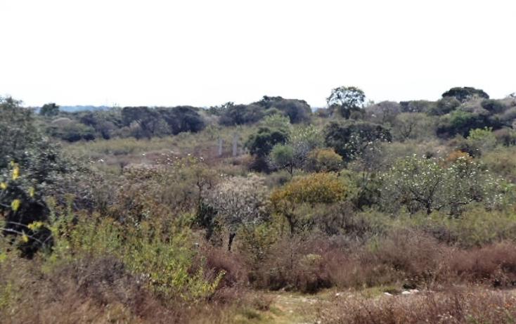 Foto de terreno habitacional en venta en  , pedregal de santa marta, tonal?, jalisco, 450514 No. 01