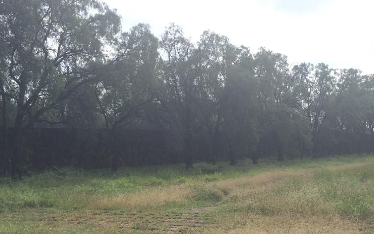 Foto de terreno habitacional en venta en  , pedregal del carmen 2a sección, león, guanajuato, 1143107 No. 02