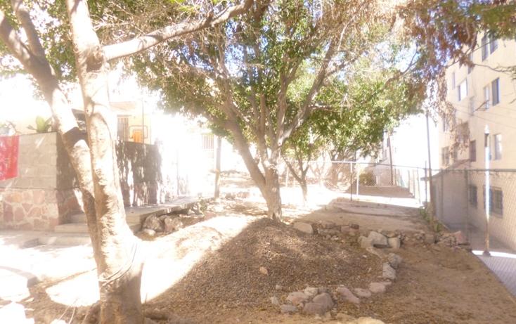 Foto de departamento en venta en  , pedregal del cortes, la paz, baja california sur, 1294987 No. 08