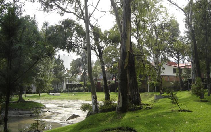 Foto de departamento en renta en  , pedregal del lago, tlalpan, distrito federal, 1278855 No. 18
