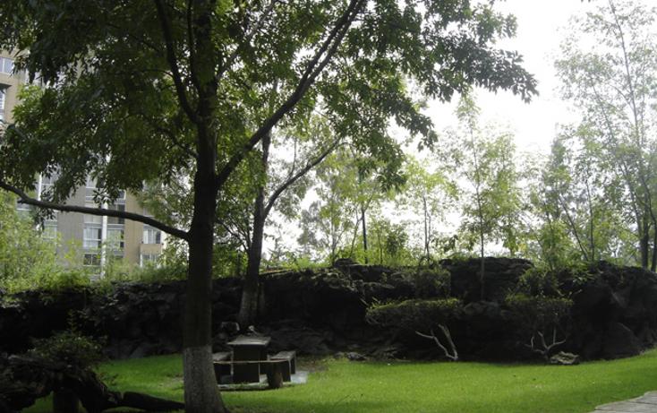 Foto de departamento en renta en  , pedregal del lago, tlalpan, distrito federal, 1278855 No. 20