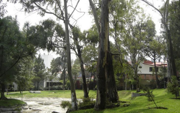 Foto de departamento en renta en  , pedregal del lago, tlalpan, distrito federal, 1521245 No. 10