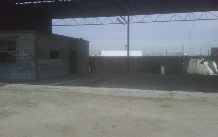 Foto de terreno comercial en venta en  , pedregal turquesa, mexicali, baja california, 1388799 No. 02