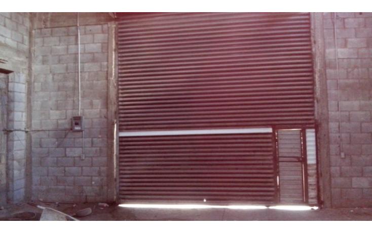 Foto de nave industrial en renta en  , pedro dom?nguez, chihuahua, chihuahua, 1352547 No. 03