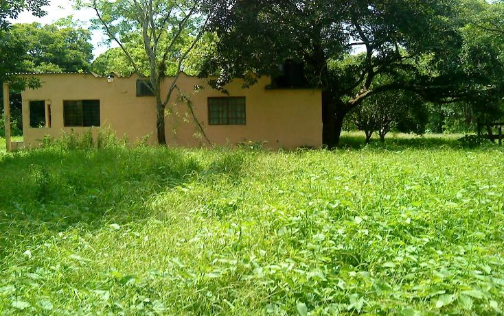 Foto de terreno comercial en venta en  , pejelagartero, huimanguillo, tabasco, 1122585 No. 01