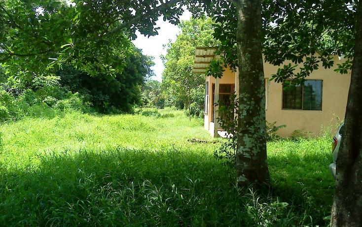 Foto de terreno comercial en venta en  , pejelagartero, huimanguillo, tabasco, 1122585 No. 03
