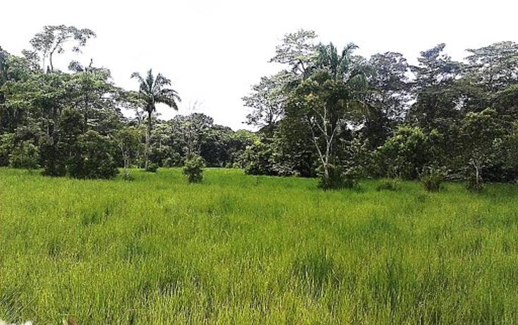 Foto de terreno comercial en venta en  , pejelagartero, huimanguillo, tabasco, 1122585 No. 06