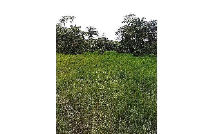 Foto de terreno comercial en venta en  , pejelagartero, huimanguillo, tabasco, 1122585 No. 08
