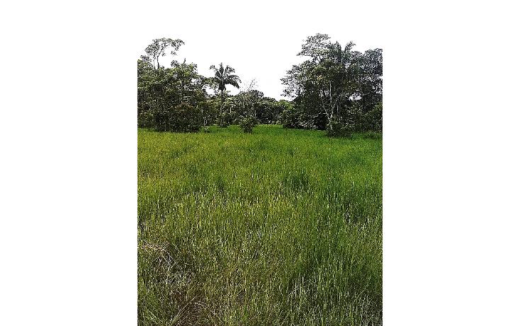 Foto de terreno comercial en venta en  , pejelagartero, huimanguillo, tabasco, 1122585 No. 09