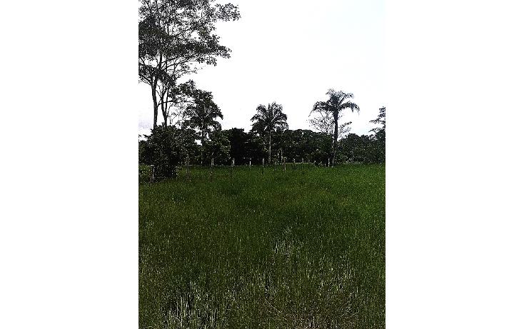 Foto de terreno comercial en venta en  , pejelagartero, huimanguillo, tabasco, 1122585 No. 10