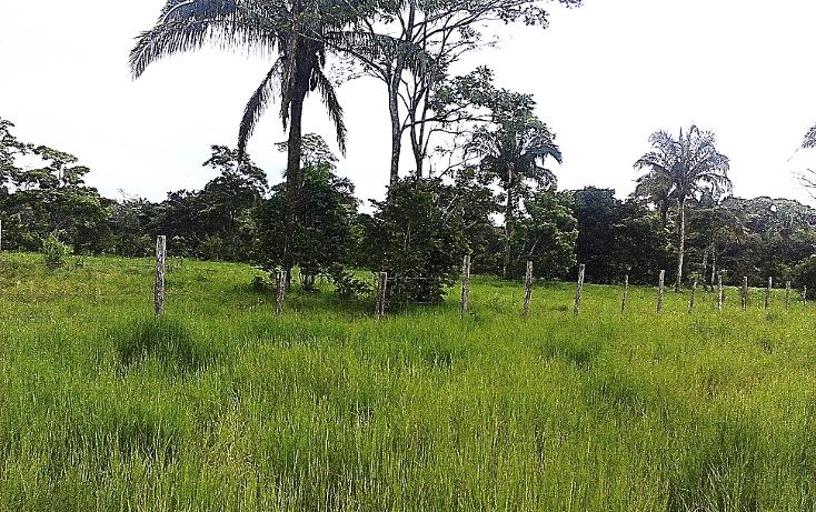 Foto de terreno comercial en venta en  , pejelagartero, huimanguillo, tabasco, 1122585 No. 11