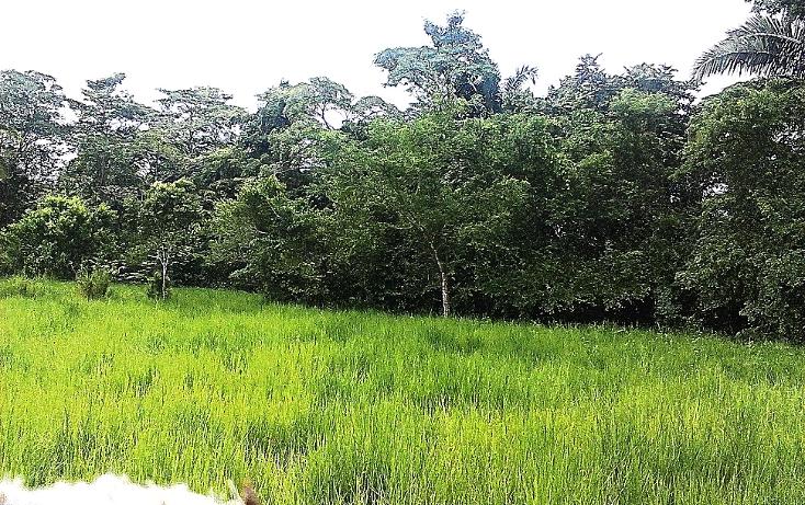 Foto de terreno comercial en venta en  , pejelagartero, huimanguillo, tabasco, 1122585 No. 14