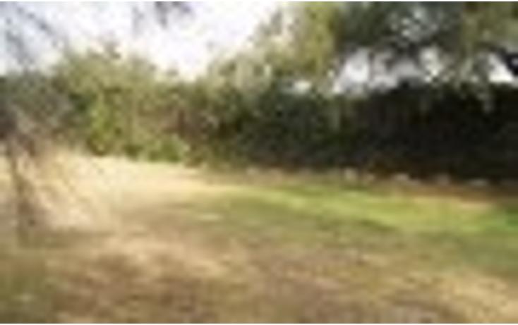 Foto de terreno habitacional en venta en  , peña pobre, tlalpan, distrito federal, 1115209 No. 03