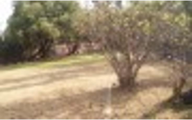 Foto de terreno habitacional en venta en  , peña pobre, tlalpan, distrito federal, 1115209 No. 04