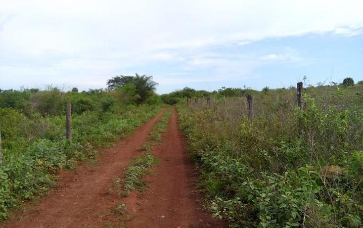 Foto de terreno industrial en venta en  , peñita, tepic, nayarit, 1222077 No. 03