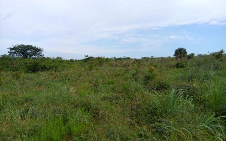 Foto de terreno industrial en venta en  , peñita, tepic, nayarit, 1222077 No. 05