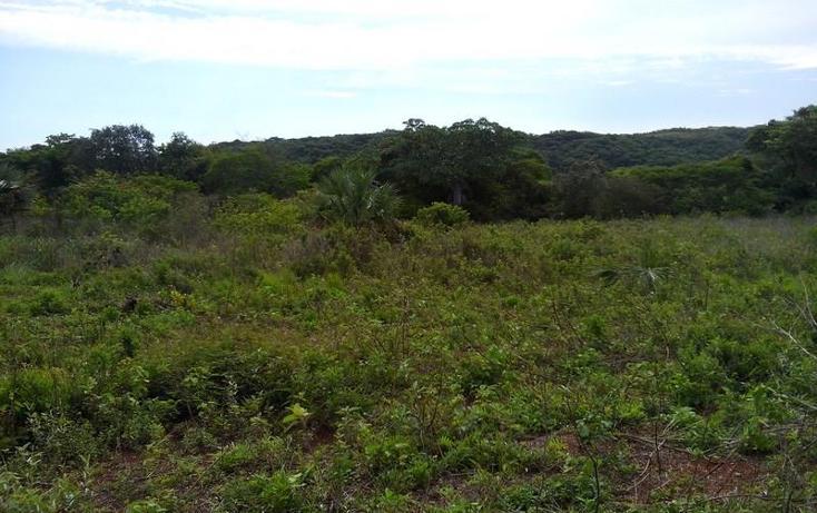 Foto de terreno industrial en venta en  , peñita, tepic, nayarit, 1222077 No. 06