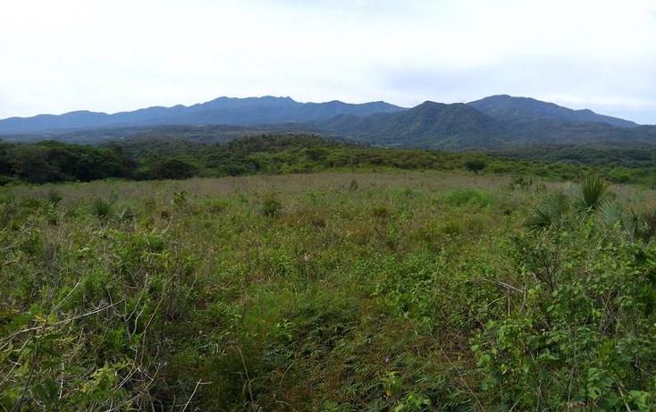 Foto de terreno industrial en venta en  , peñita, tepic, nayarit, 1222077 No. 08