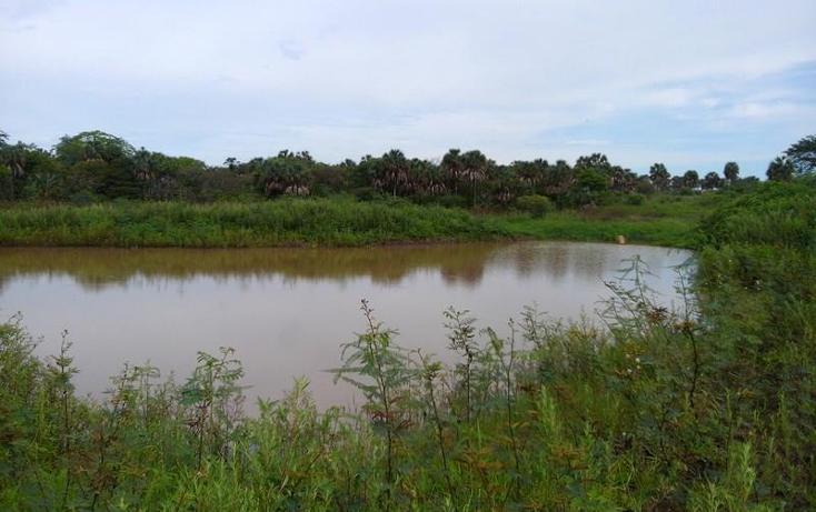 Foto de terreno industrial en venta en  , peñita, tepic, nayarit, 1222077 No. 15