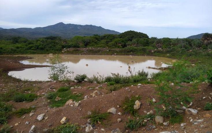 Foto de terreno industrial en venta en  , peñita, tepic, nayarit, 1222077 No. 16