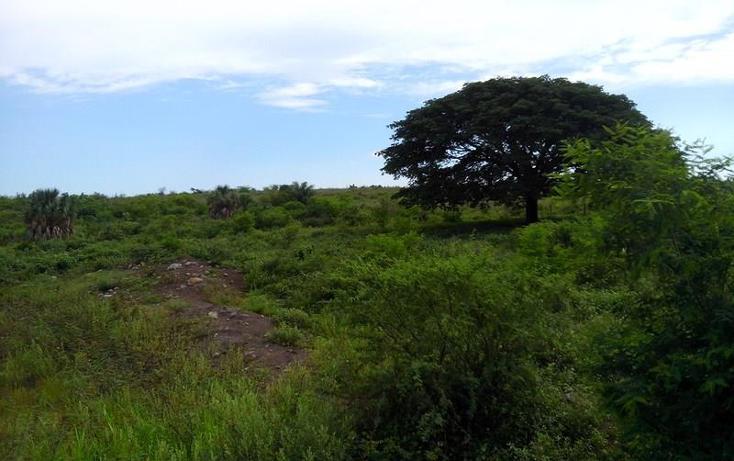 Foto de terreno industrial en venta en  , peñita, tepic, nayarit, 1222077 No. 17