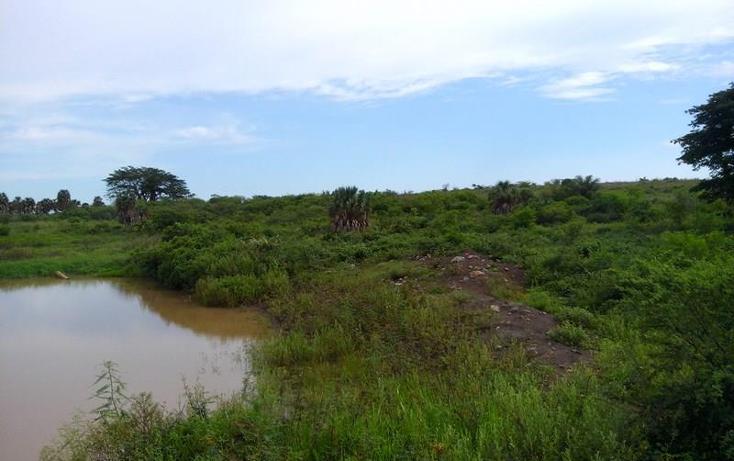 Foto de terreno industrial en venta en  , peñita, tepic, nayarit, 1222077 No. 18