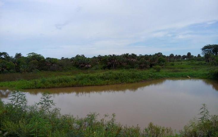 Foto de terreno industrial en venta en  , peñita, tepic, nayarit, 1222077 No. 19