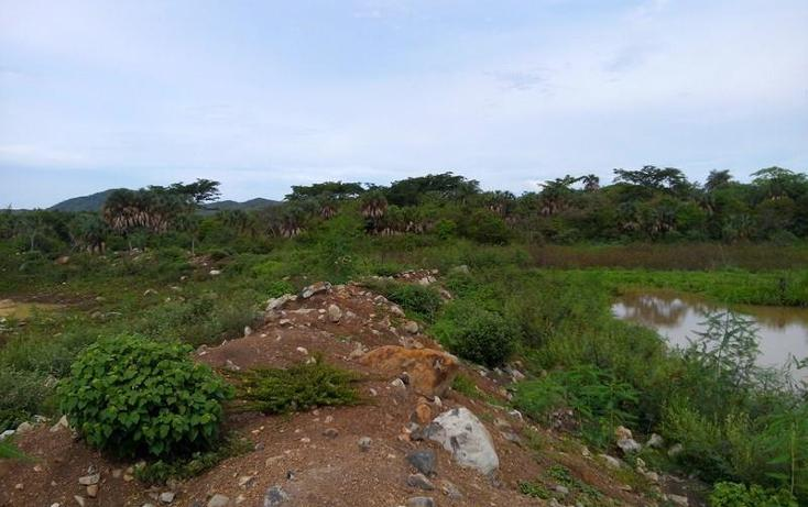 Foto de terreno industrial en venta en  , peñita, tepic, nayarit, 1222077 No. 20