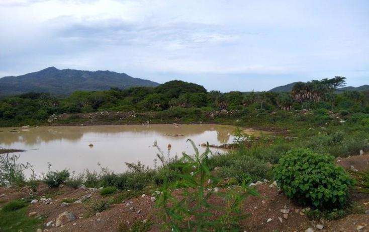 Foto de terreno industrial en venta en  , peñita, tepic, nayarit, 1222077 No. 21