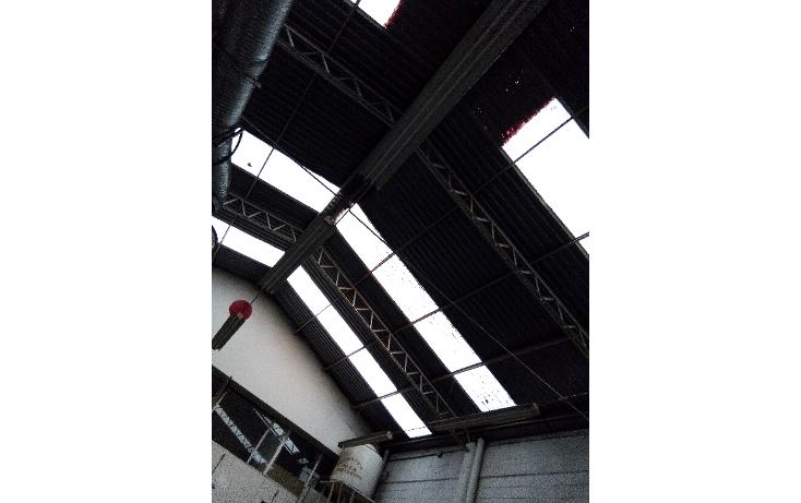 Foto de nave industrial en renta en  , pensil norte, miguel hidalgo, distrito federal, 1733150 No. 13
