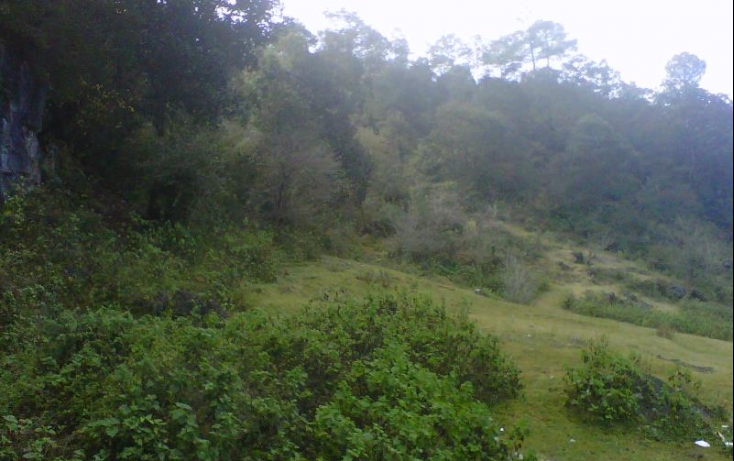 Foto de terreno habitacional en venta en periferico norte, morelos, san cristóbal de las casas, chiapas, 375375 no 02