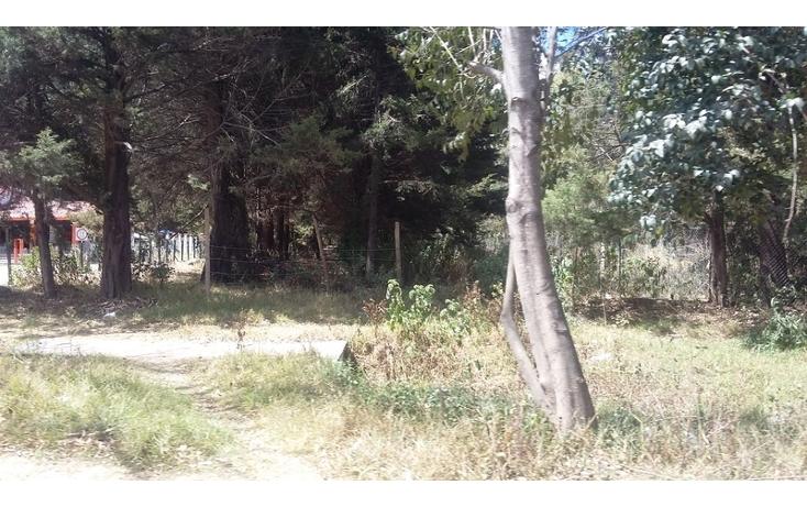 Foto de terreno comercial en venta en periférico poniente , los alcanfores, san cristóbal de las casas, chiapas, 1835026 No. 03