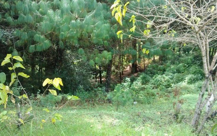 Foto de terreno comercial en venta en periferico sur poniente 171, insurgentes, san cristóbal de las casas, chiapas, 817151 no 03