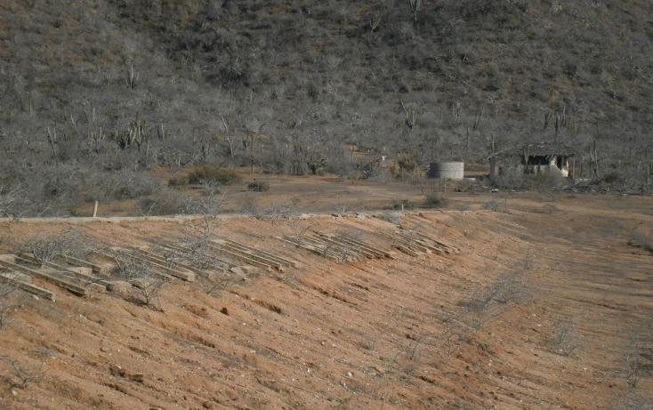 Foto de terreno habitacional en venta en  , pescadero, la paz, baja california sur, 1043645 No. 08