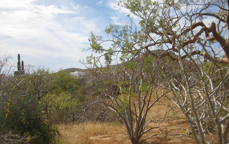 Foto de terreno habitacional en venta en  , pescadero, la paz, baja california sur, 1046429 No. 03