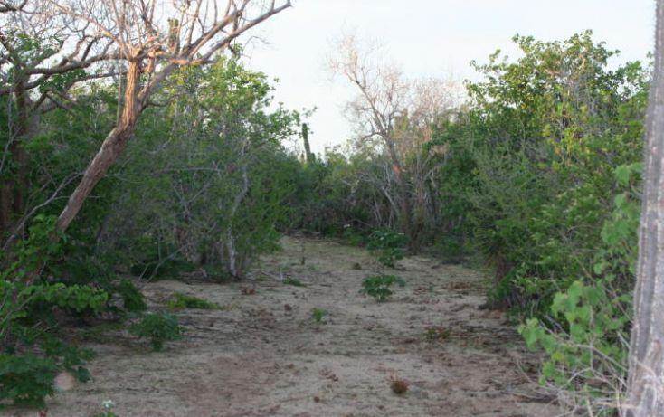 Foto de terreno habitacional en venta en, pescadero, la paz, baja california sur, 1062489 no 05