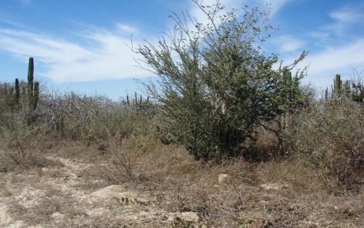 Foto de terreno habitacional en venta en  , pescadero, la paz, baja california sur, 1088963 No. 04