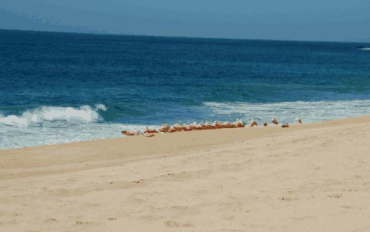 Foto de terreno habitacional en venta en  , pescadero, la paz, baja california sur, 1124001 No. 04