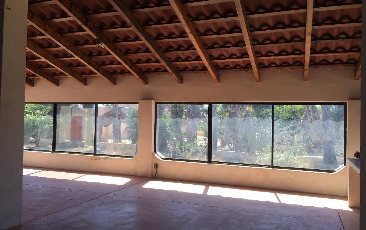 Foto de casa en venta en  , pescadero, la paz, baja california sur, 1260479 No. 05