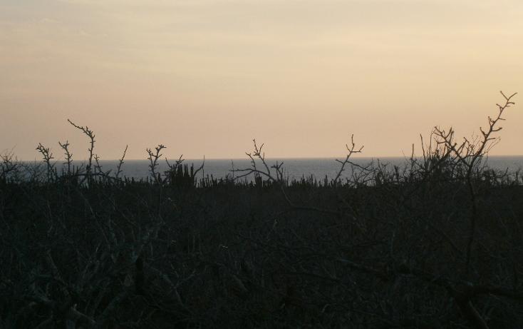 Foto de terreno habitacional en venta en  , pescadero, la paz, baja california sur, 1275739 No. 09