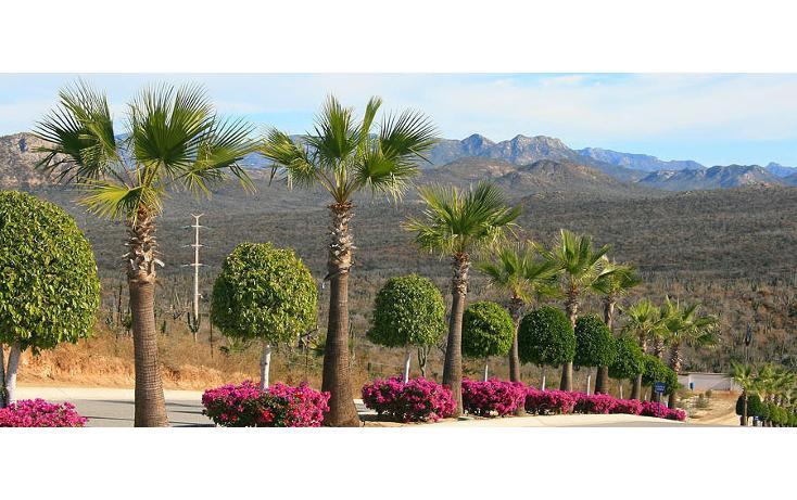 Foto de terreno habitacional en venta en  , pescadero, la paz, baja california sur, 1276249 No. 08