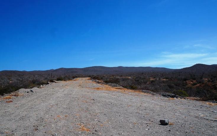 Foto de terreno habitacional en venta en  , pescadero, la paz, baja california sur, 1294535 No. 05