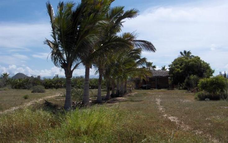 Foto de terreno habitacional en venta en  , pescadero, la paz, baja california sur, 1294995 No. 05