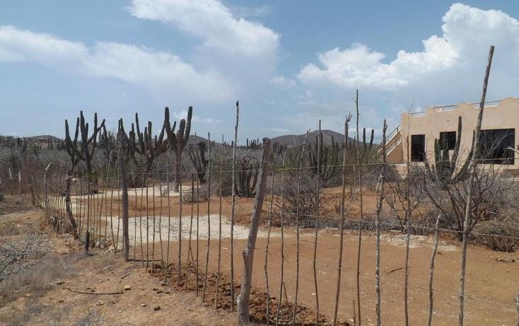 Foto de terreno habitacional en venta en  , pescadero, la paz, baja california sur, 1697384 No. 07