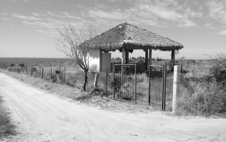 Foto de terreno habitacional en venta en  , pescadero, la paz, baja california sur, 1732088 No. 11