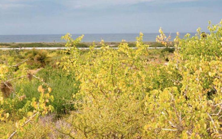 Foto de terreno habitacional en venta en, pescadero, la paz, baja california sur, 944961 no 03