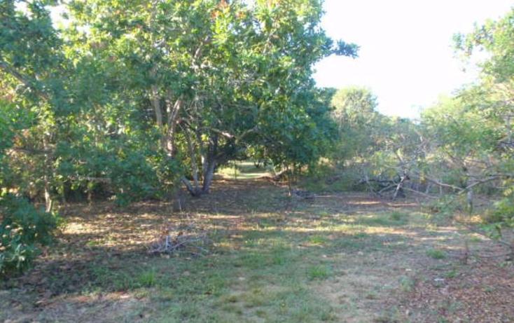 Foto de terreno comercial en venta en rancho las palmas , pesquería boca del cielo, tonalá, chiapas, 846065 No. 10