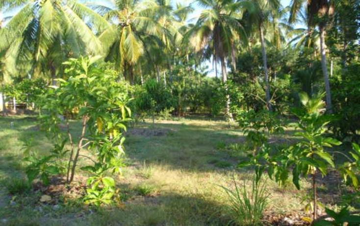 Foto de terreno comercial en venta en rancho las palmas , pesquería boca del cielo, tonalá, chiapas, 846065 No. 12