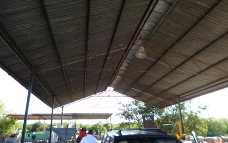 Foto de terreno comercial en venta en  , pesquería, pesquería, nuevo león, 1149823 No. 03